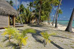 Tikehau Atoll Tuamotu Atoll Tahiti