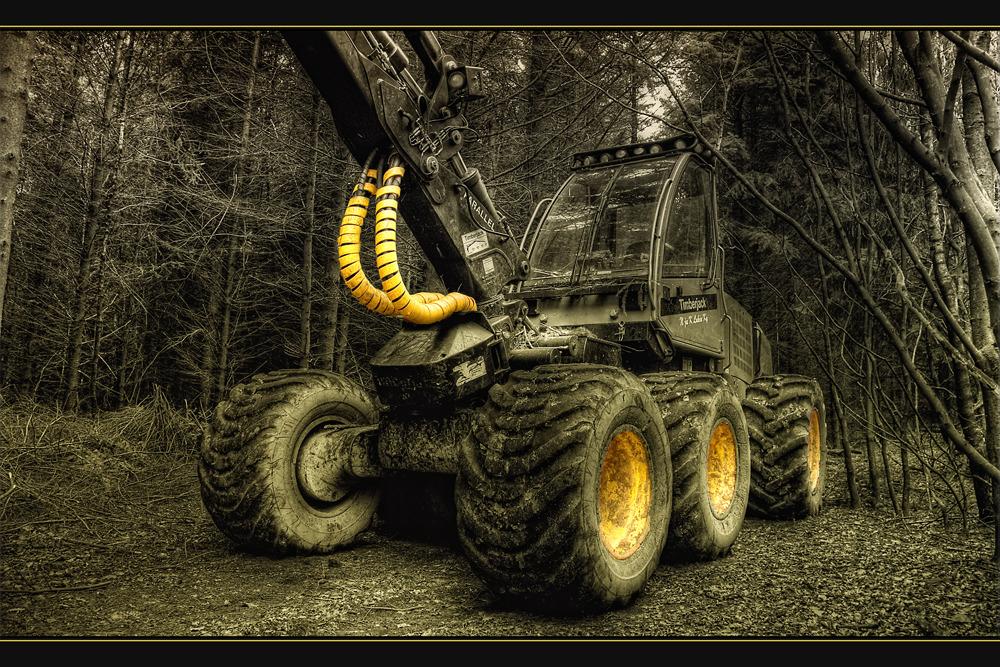 Timberjack CK
