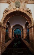 TimeLine III - Senkenberg Museum