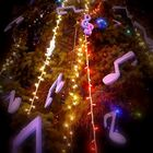 Timisoara Christmas 3