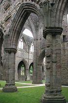Tintern Abbey 2005