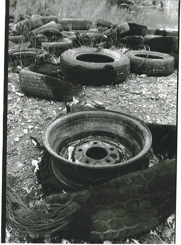 tires of life