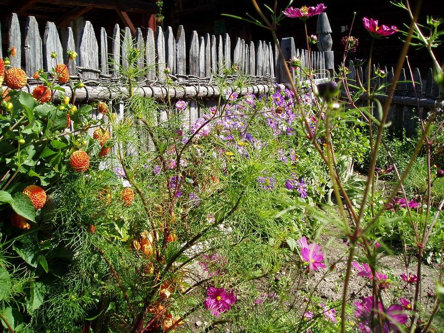 Tiroler Blumengarten