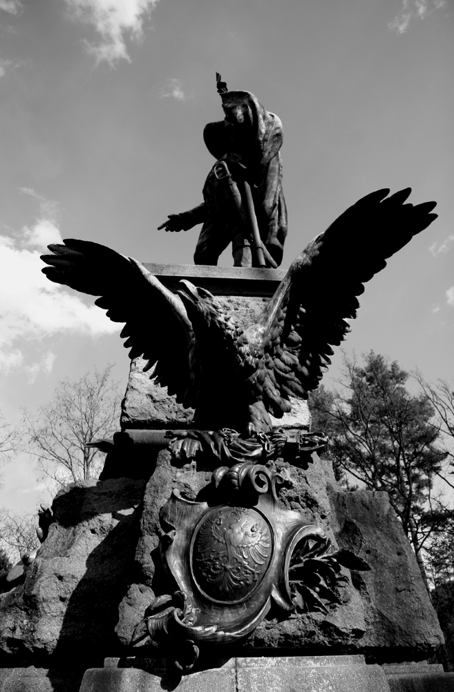Tiroler Freiheitskampf
