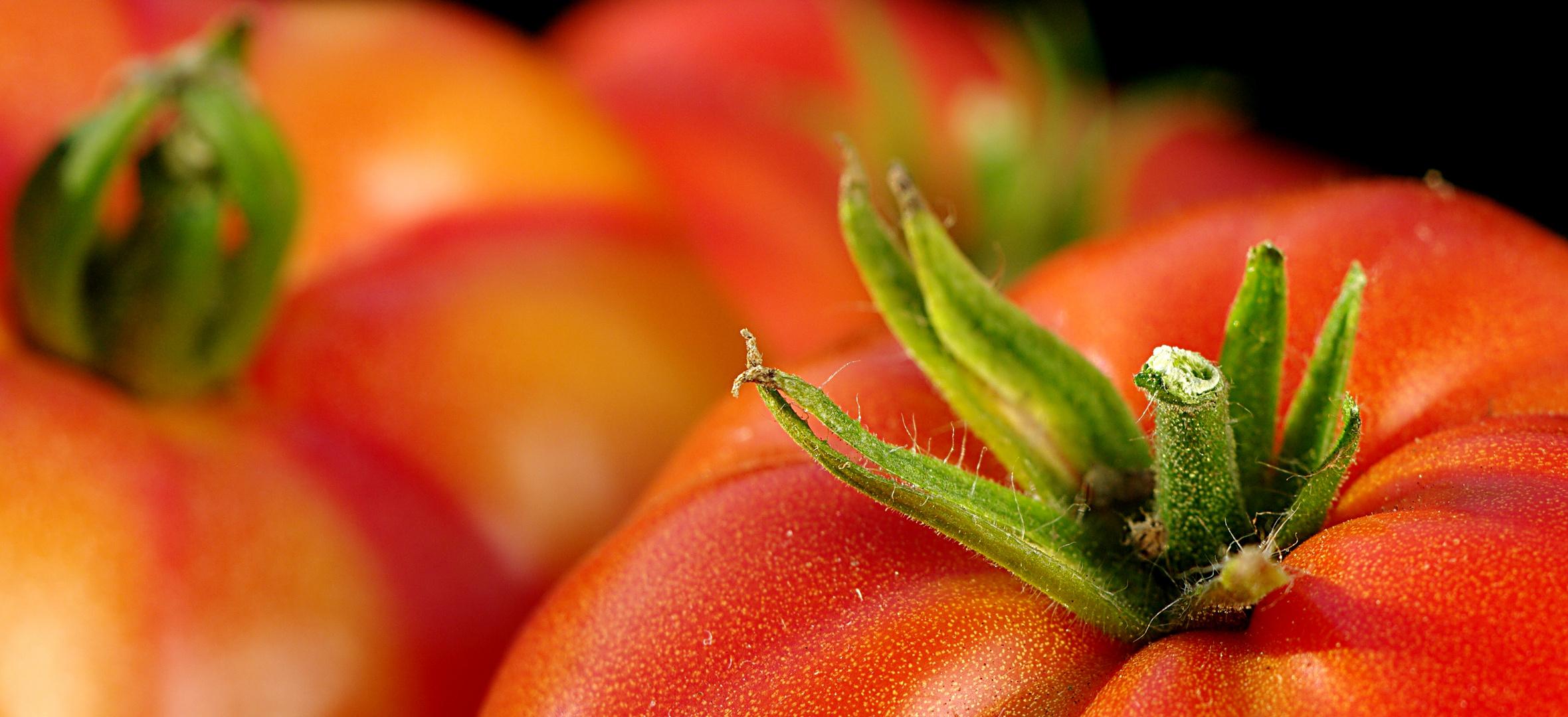 tomate russian 117 foto bild stillleben essen trinken obst gem se bilder auf fotocommunity. Black Bedroom Furniture Sets. Home Design Ideas