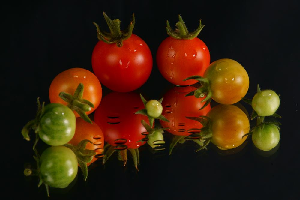 Tomaten - Familie