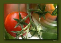 - Tomaten1 -