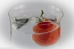 Tomatensaft....#1728##