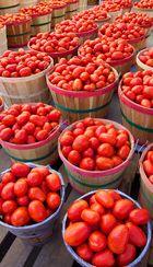Tomates?