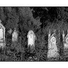 Tombes du passé