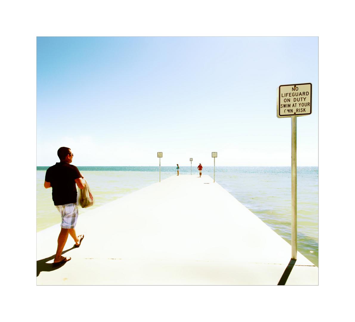 TomCatwalk-- florida check my brain