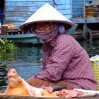 Tonle Sap floating village near Krakor
