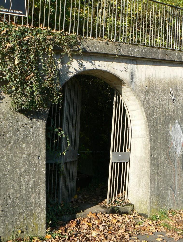 Tor zur Villa Schöning