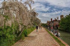 Torcello das andere Venedig