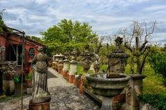 Torcello - Weinanbau -