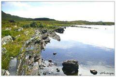 Torflandschaft Connemara Irland