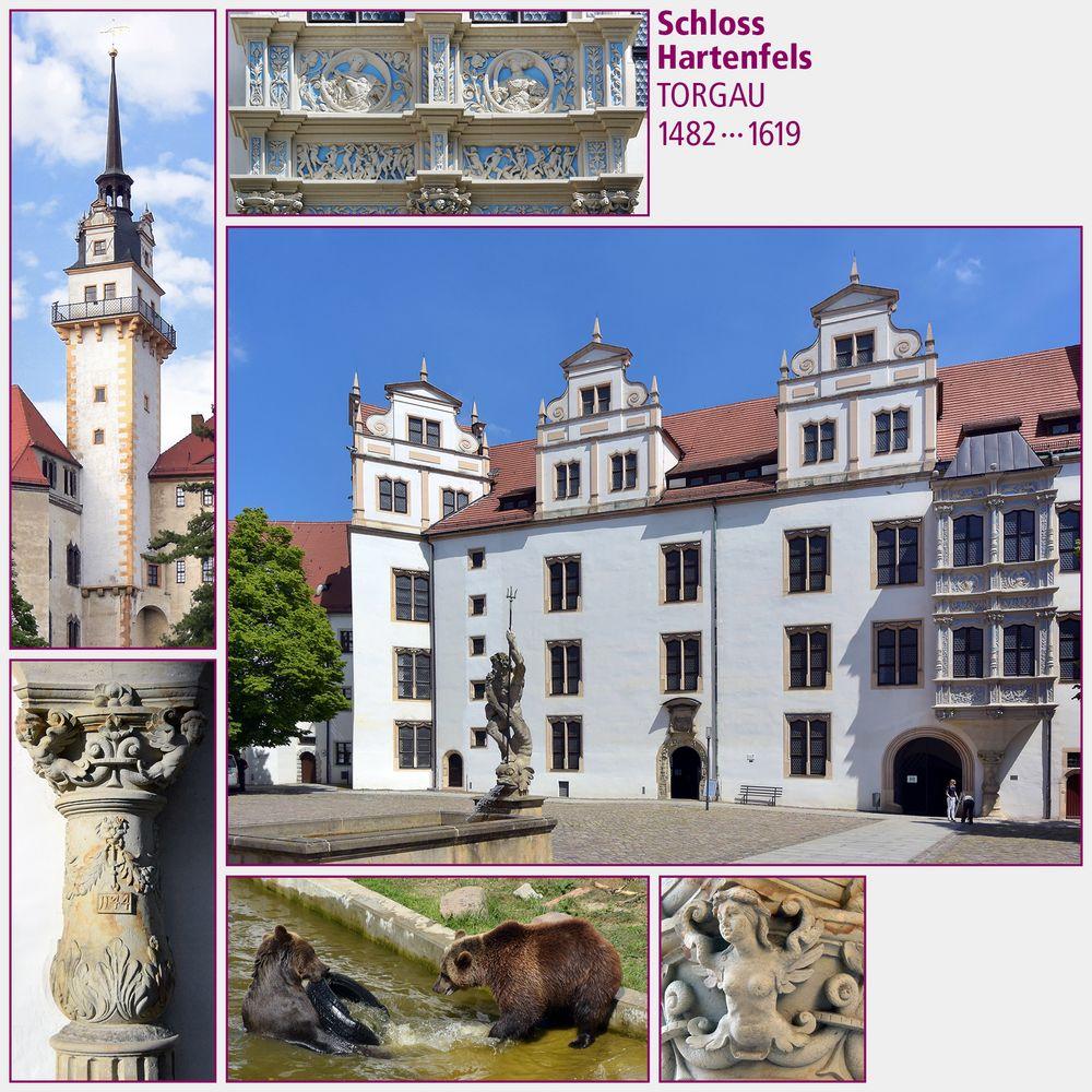 Torgau · Schloss Hartenfels II