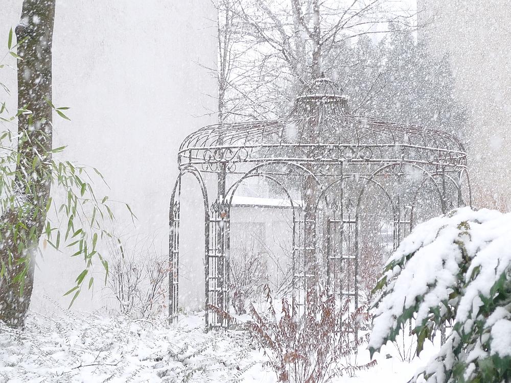 Tormiento de Nieve