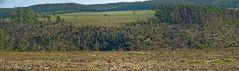 Tornado Quirla Waldschaden