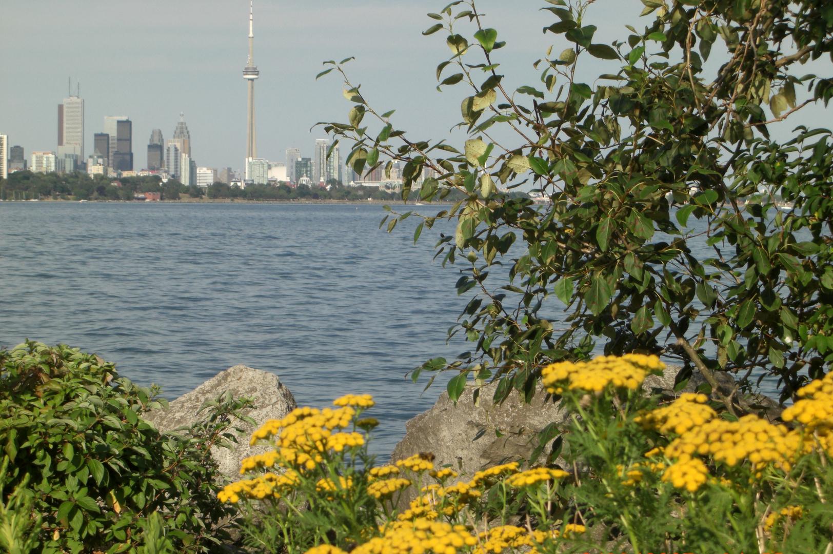 Toronto_Spring view