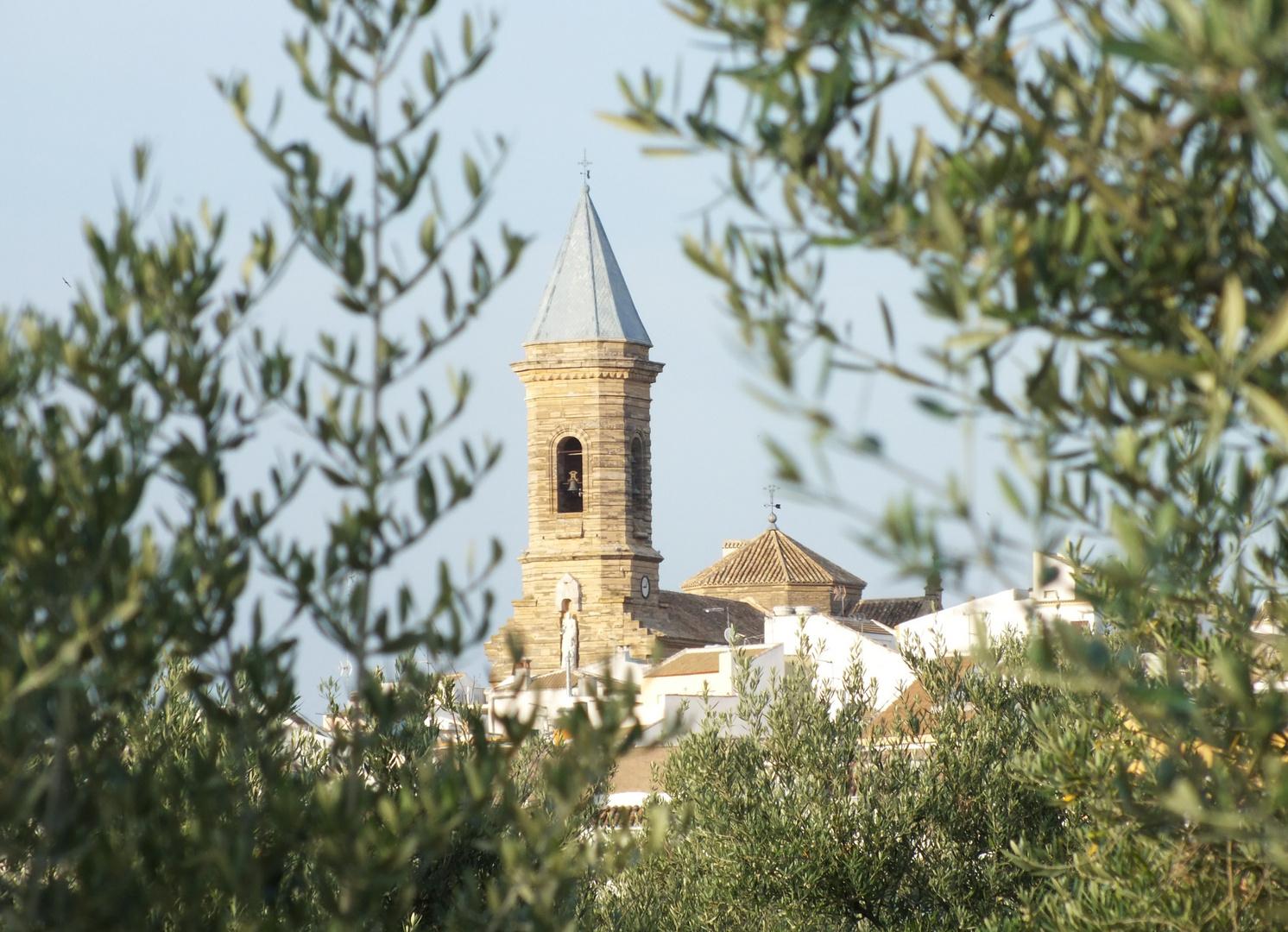 Torre de la Iglesia de Porcuna (Jaen)