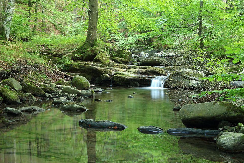 Torrente di montagna foto immagini paesaggi laghi e for Disegni di laghi