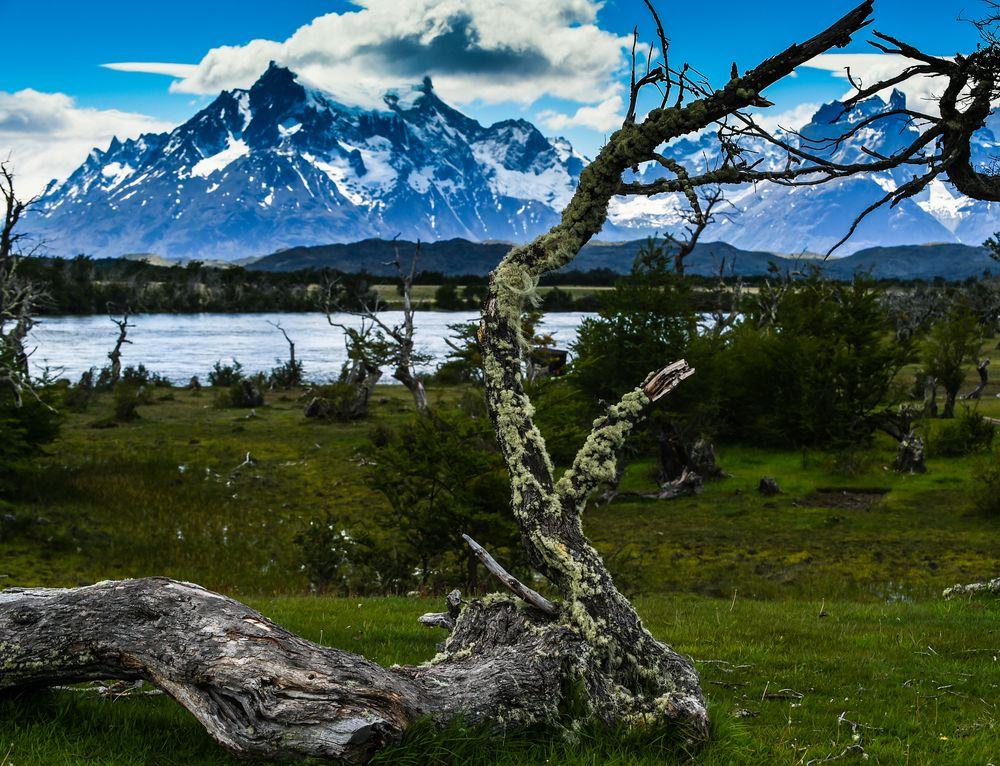 Torres del Paine                                        DSC_6068-3