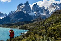 Torres del Paine    (fotografieren)                     DSC_6094-2