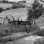 Toscana #008A sw