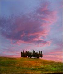 Toscana 2008