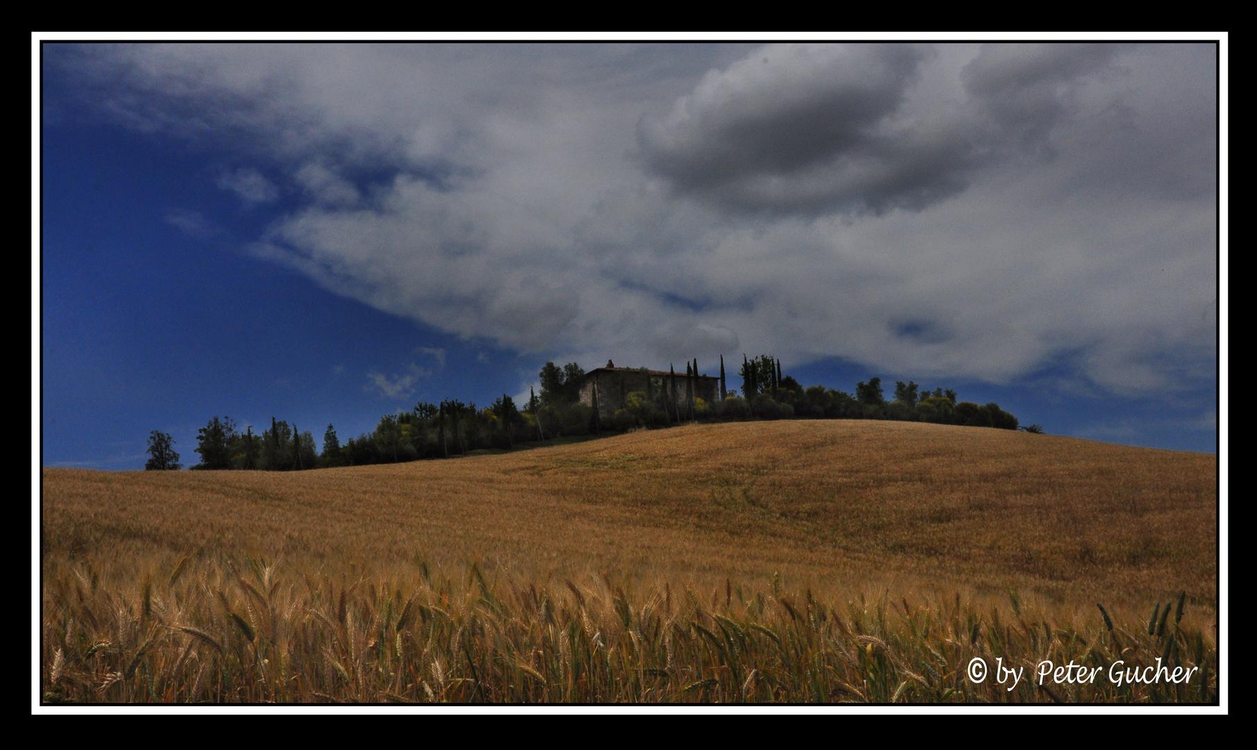 Toscana 73