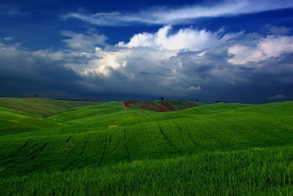 ..........Toscana III..........