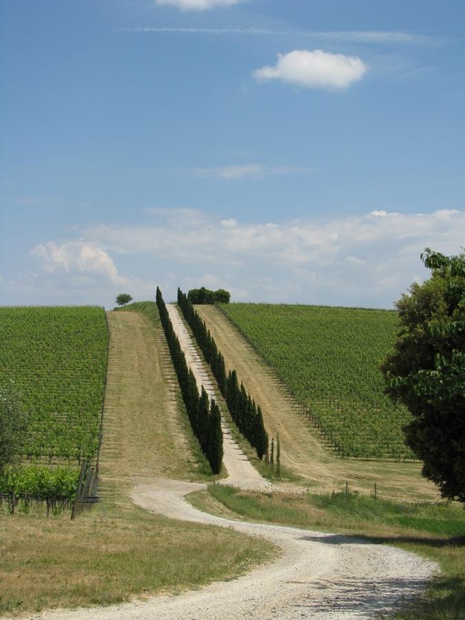 Toscana im Mai