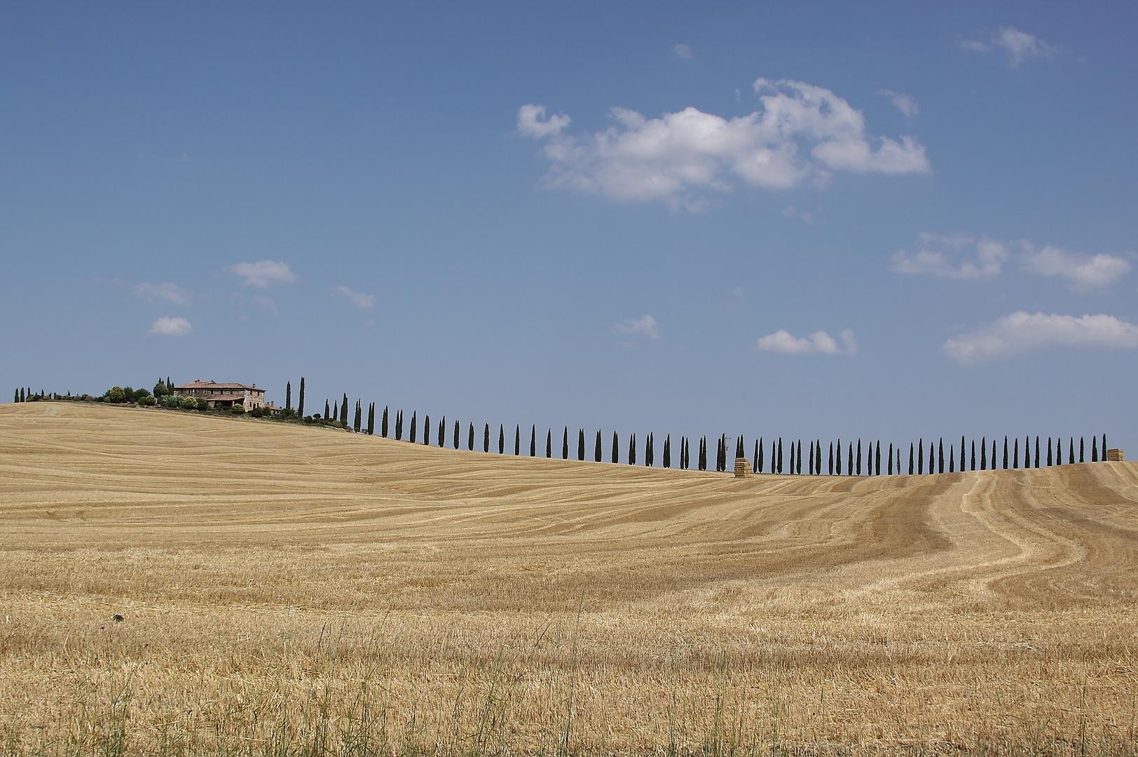 Toscana im Sommer