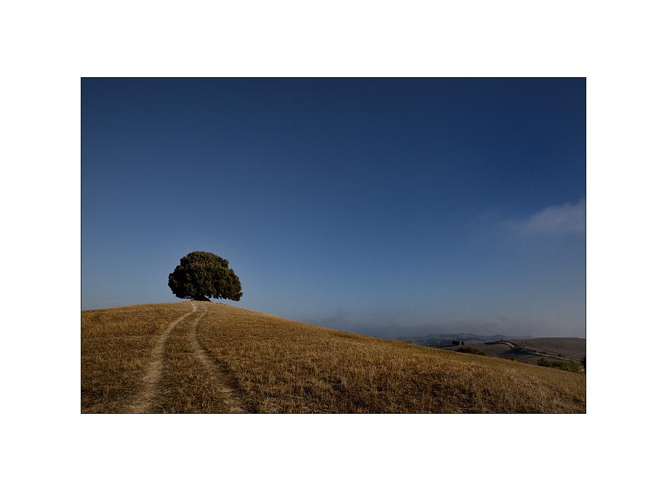 Toscana Impressionen III