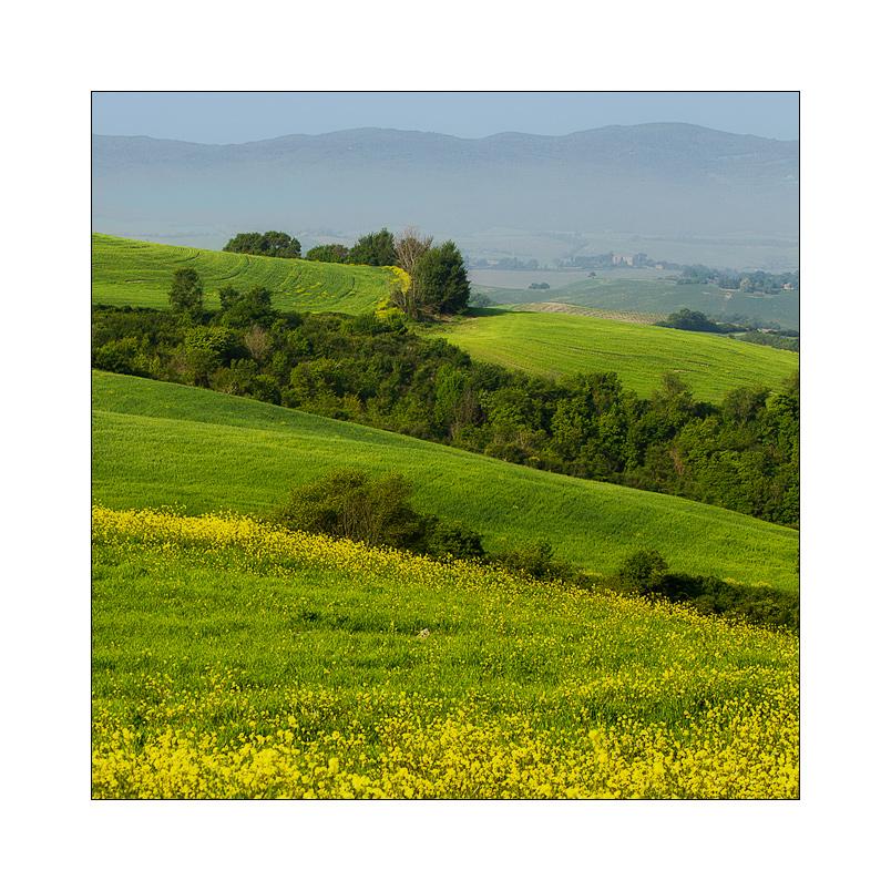 Toscana in primavera II