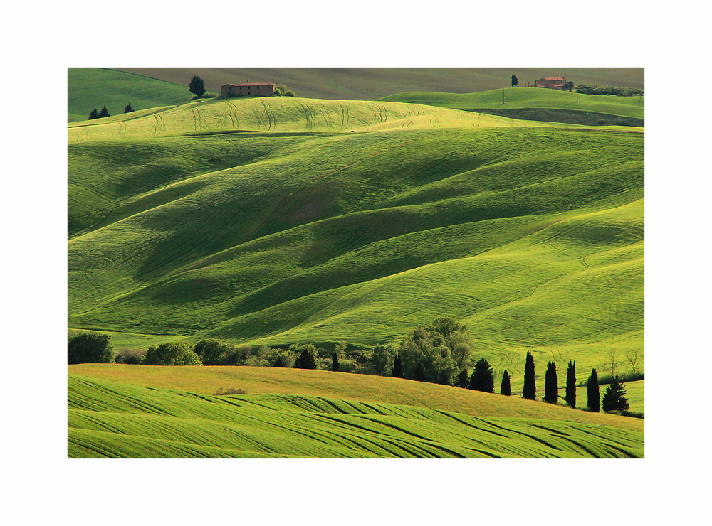Toscana Landschaft. (18)