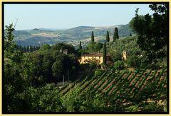 Toscana pur...