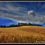 Toscanawolken
