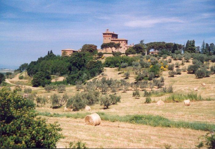 Toskana-Landschaft (Region Montalcino) II
