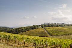 Toskanische Landschaft (fast) ohne Zypressen - 1