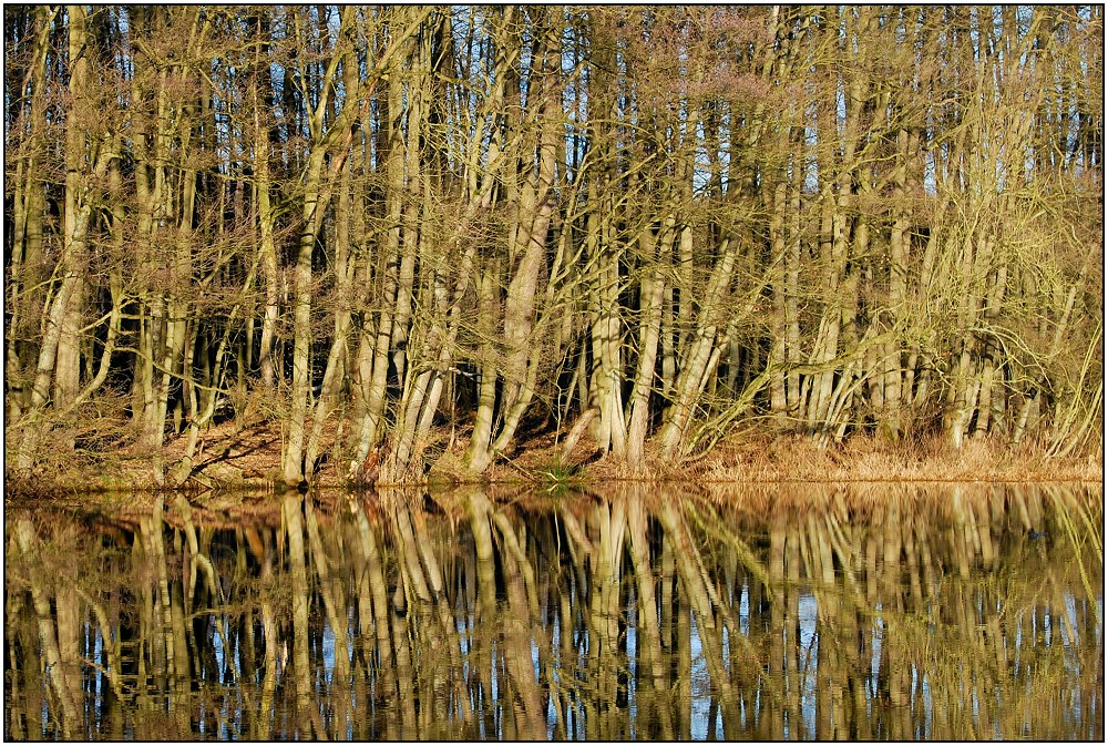 total reflection