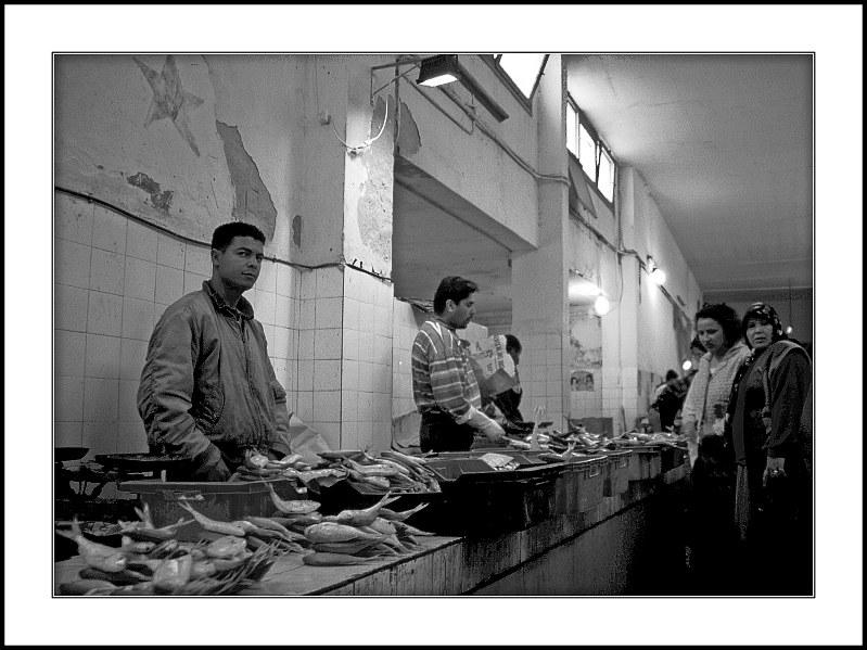 tote Fische - lebende Menschen, Markthalle, Sousse, Tunesien 1999