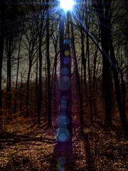 Totem of Spring