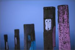 Totems [0159]