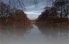 Totes Moor Steinhuder Meer