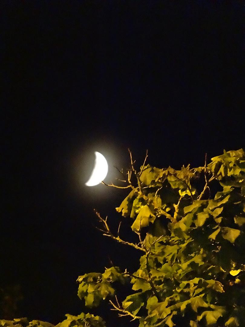 Toucher de lune