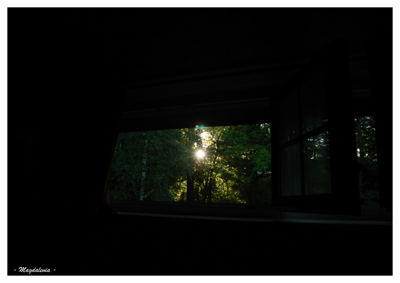 """""""Toujours regarder vers la lumière"""""""