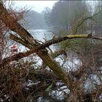 Tour an der Ruhr (2) - Hochwasserspuren