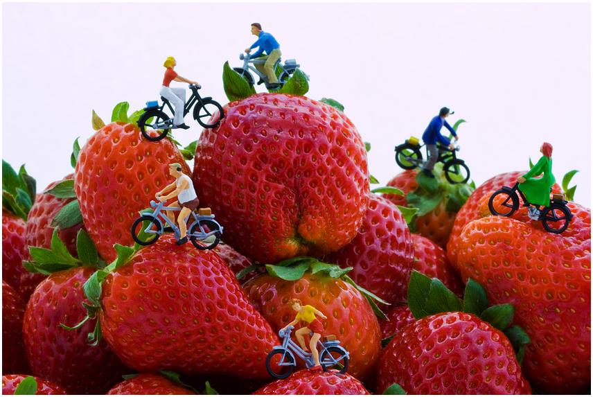 Tour de Strawberry